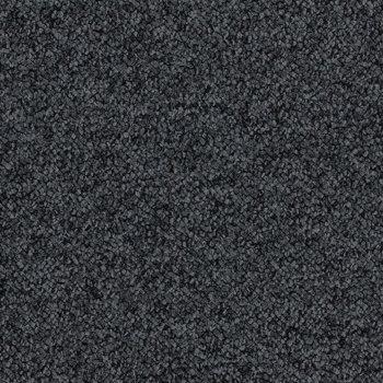 Tessera Chroma Tuxedo